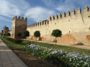 Muralla de Saleh